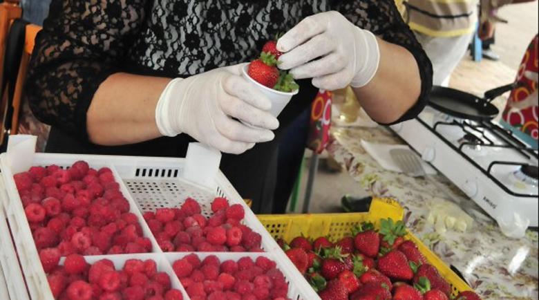 Български берачи на ягоди разбунтуваха Ирландия