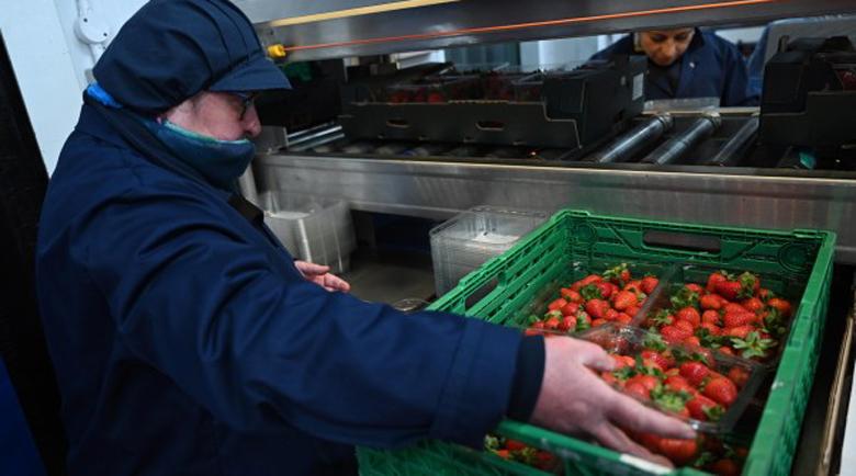 """Работниците от България, Румъния и Молдова в """"ничията земя"""" на Европа"""