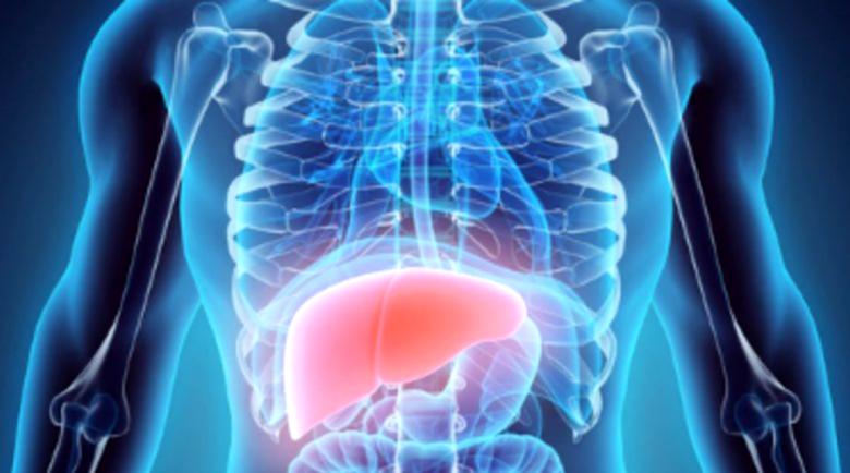 Защо мазният черен дроб е опасен за здравето?