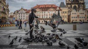 Чехия отваря границите си и разрешава събирания на до 500 души