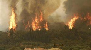 Голям пожар пламна на Пелопонес, евакуираха крайбрежно селище