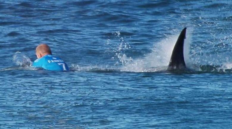 Смел сърфист се пребори с акула, за да спаси жена си