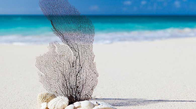 Турист отнесе глоба за кражба на плажен пясък от Сардиния